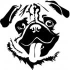 Dárky pro chovatele psa plemene Mops