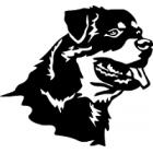 Dárky pro chovatele psa plemene Rotvajler